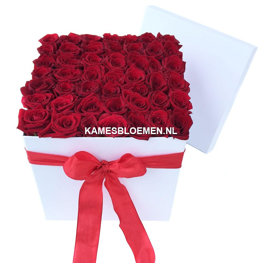 flower box hoog wit rood met prachtige rozen kames bloemen. Black Bedroom Furniture Sets. Home Design Ideas