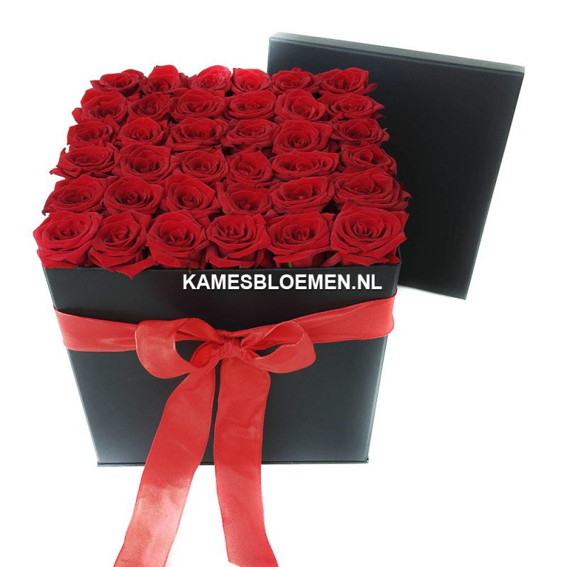 flower box hoog zwart met prachtige rode rozen kames bloemen. Black Bedroom Furniture Sets. Home Design Ideas