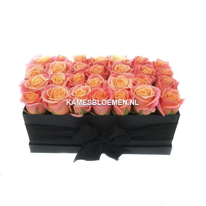 flower box miss piggy langwerpig kames bloemen. Black Bedroom Furniture Sets. Home Design Ideas