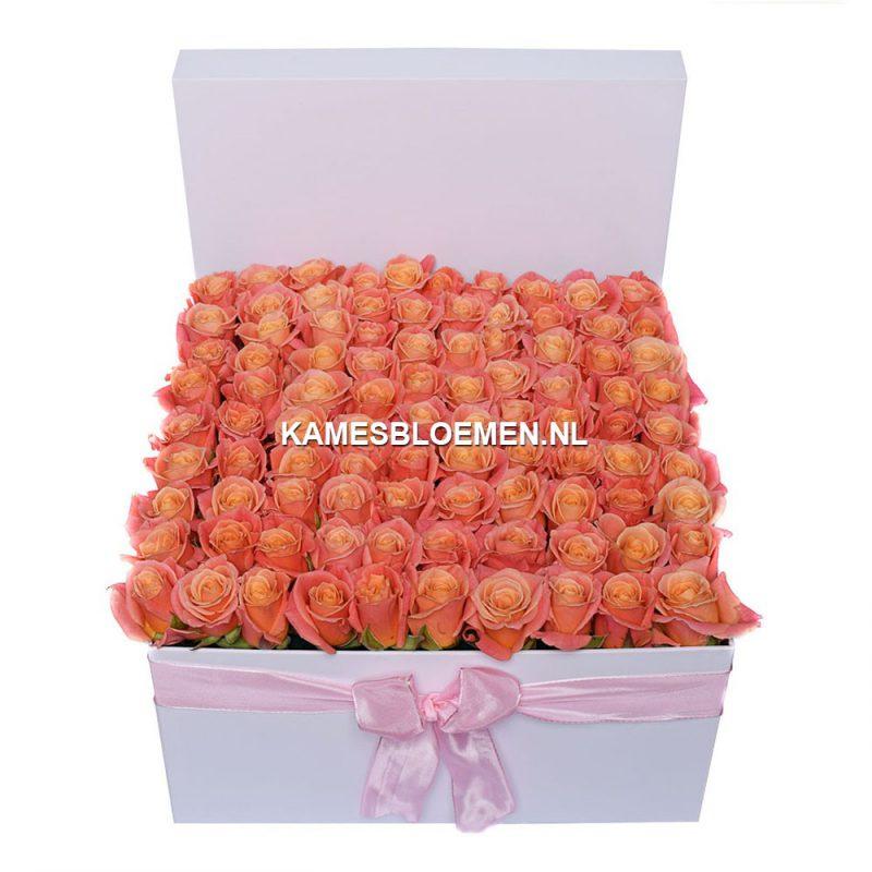 flower box wit miss piggy rozen kames bloemen. Black Bedroom Furniture Sets. Home Design Ideas