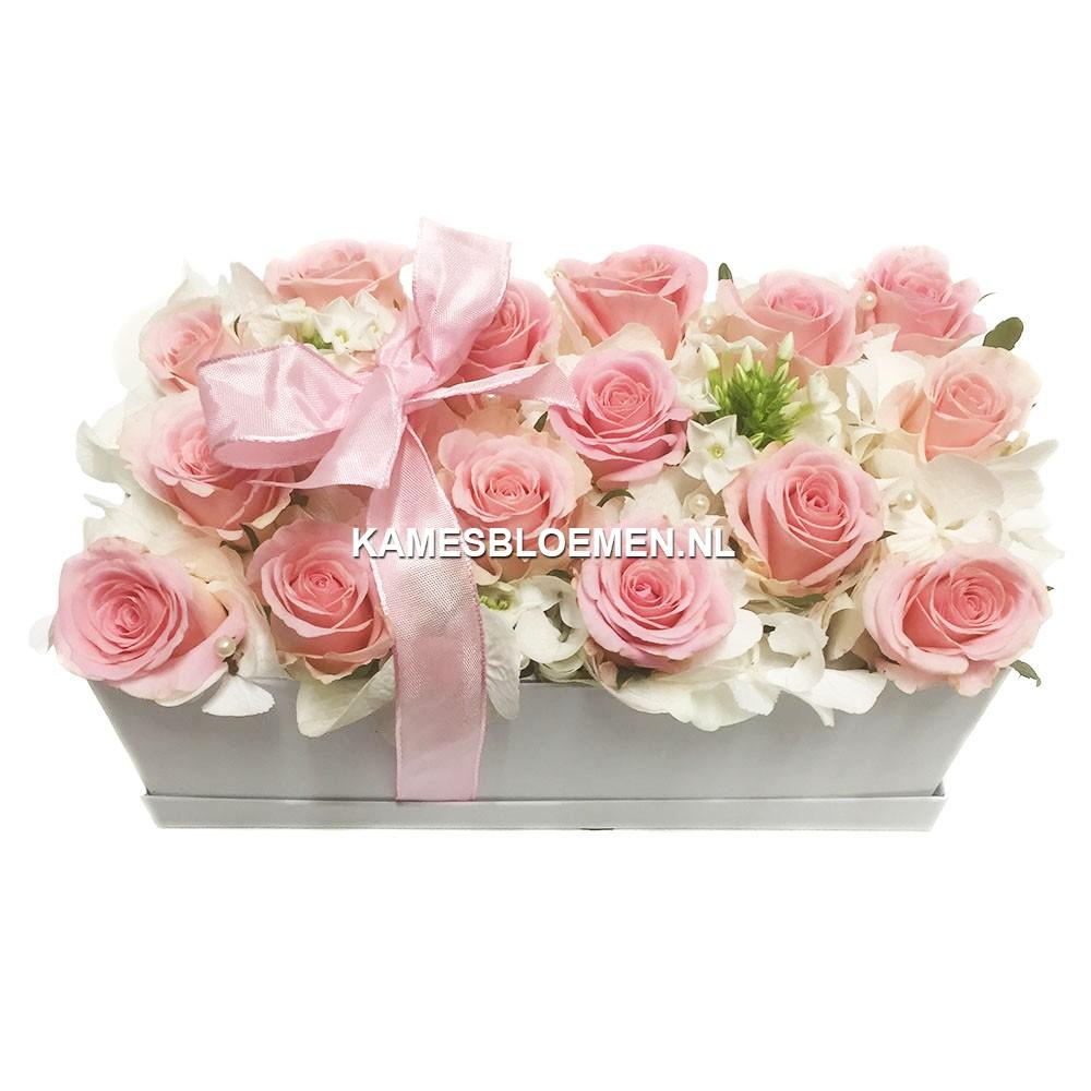 flower box wit langwerpig met prachtige bloemen kames. Black Bedroom Furniture Sets. Home Design Ideas