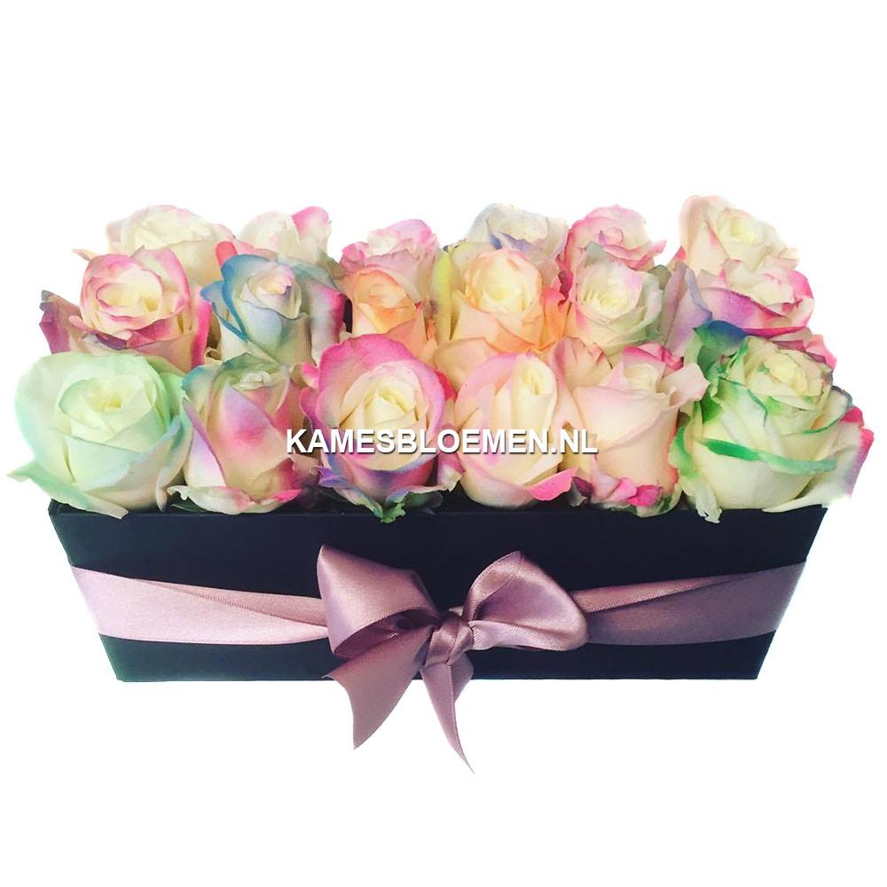 flower box ranbow langwerpig kames bloemen. Black Bedroom Furniture Sets. Home Design Ideas